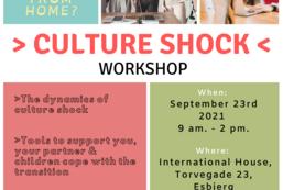 Culture Shock workshop